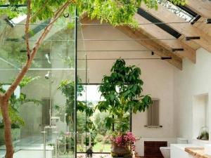 Các mẫu thiết kế giếng trời đẹp giúp ngôi nhà bạn nổi bật